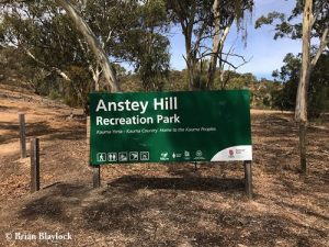 Anstey Hill Recreation Park