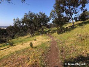 Marino Conservation Park vegetation