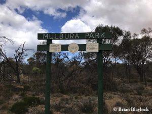 Mulbura Park Reserve