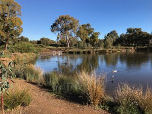 Oaklands Reserve, Oaklands Wetland