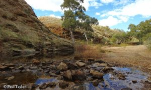 Rocks Reserve