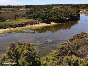 Wills Creek Conservation Park
