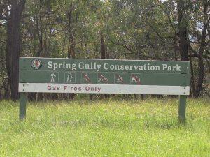 spring-gully1